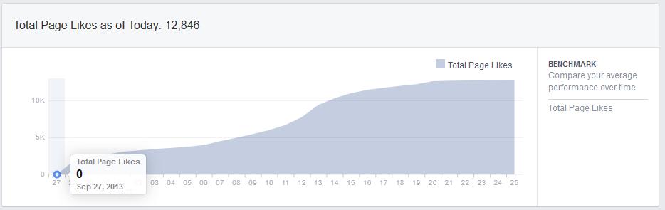 Fanpage Statistik